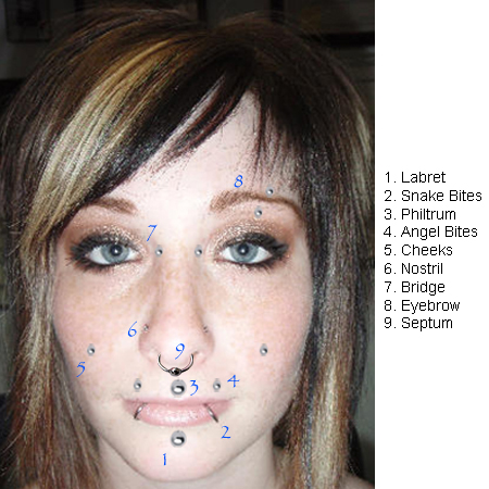 Piercing Types Haven Body Arts Piercing Tattoo