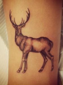 Tattoos-Carolina-Haven-Body-Arts-Piercing-Tattoo-Northampton-Ma-01060 (51)